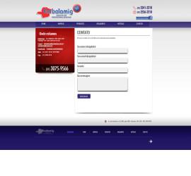 CRIAÇÃO DE SITES: WEBSITE EMBALAMIG – WORDPRESS
