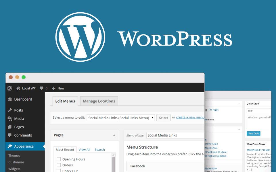 5313b53929a Netuna - Criação de sites Wordpress em BH